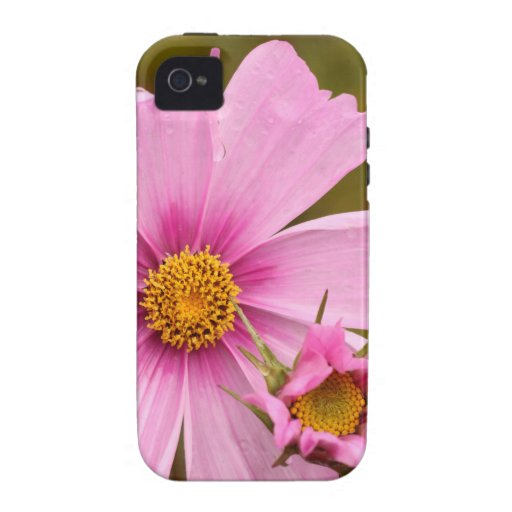 Pink Flowers phtographed by Tutti Vibe iPhone 4 Cover