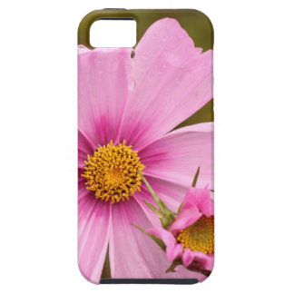 Pink Flowers phtographed by Tutti iPhone SE/5/5s Case
