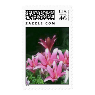 Pink Flowers Postage Stamps