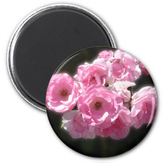 Pink Flowers Standard, 2¼ Inch Round Magnet