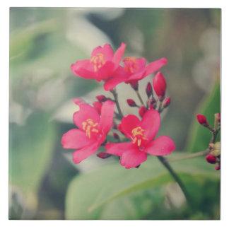 Pink flowers tile
