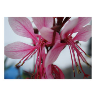 Pink Flowers Trading Card Large Business Card