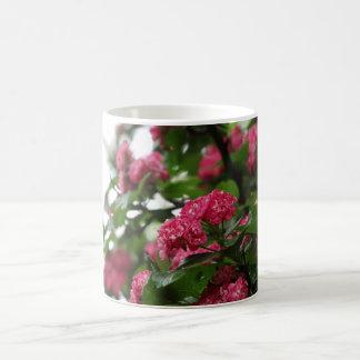 Pink Flowers Tree Photo Mug