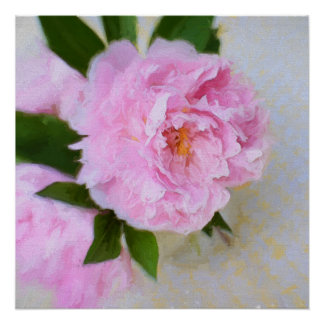 Pink Fluffy Peony Painting Poster