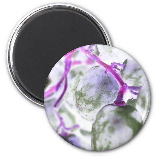 pink fluorescence 2 inch round magnet