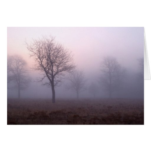 Pink Fog Stationery Note Card