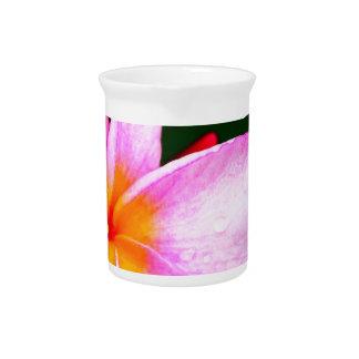 Pink Frangipani Beverage Pitchers