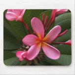 Pink Frangipani Mouse Pad
