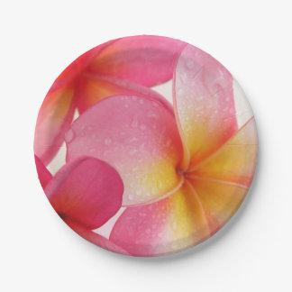 Pink Frangipani Paper Plate