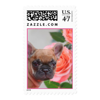 Pink French Bulldog Postage stamps