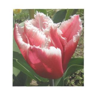Pink Fringed Tulip Notepad