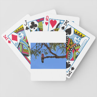 PINK GALAH RURAL QUEENSLAND AUSTRALIA CARD DECKS