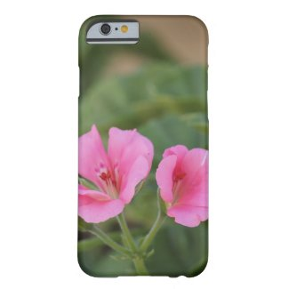 Pink Geranium iPhone Case Barely There iPhone 6 Case