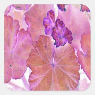 Pink Geranium Leaves Square Sticker