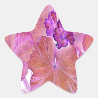 Pink Geranium Leaves Star Sticker