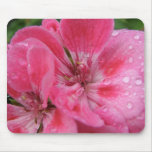 Pink Geranium Petals Mouse Pad