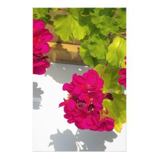 Pink Geranium Stationery