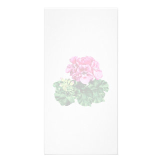 Pink Geranium with Dew Personalized Photo Card