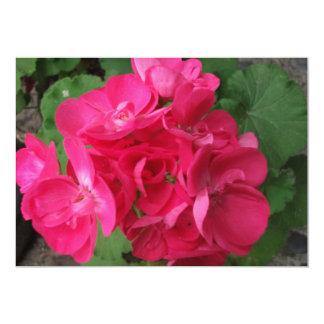 Pink Geraniums Card