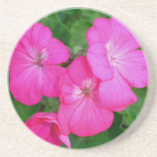 Pink Geraniums Flowers Coaster
