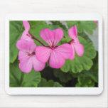 Pink geraniums mousepad