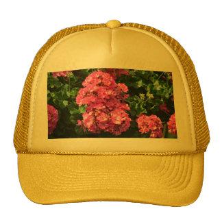 Pink Geraniums Trucker Hat