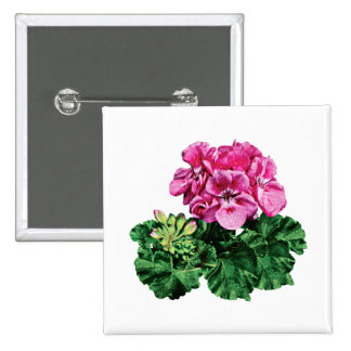 Pink Geraniums with Dew Pinback Button
