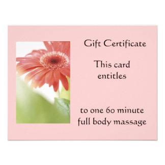 Pink Gerbena Gift Certificate Announcement