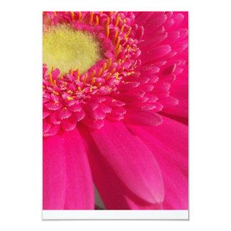 "Pink Gerber Daisy 3.5"" X 5"" Invitation Card"