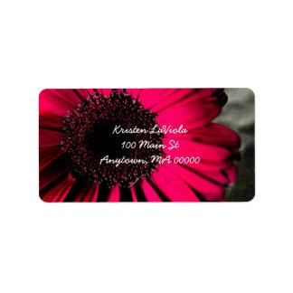 Pink Gerber Daisy Address Label