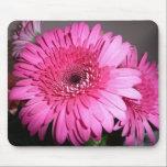 """Pink Gerber Daisy Mouse Pad<br><div class=""""desc"""">Pink Gerber Daisy</div>"""
