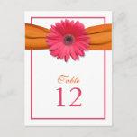 Pink Gerber Daisy Orange Ribbon Table Number Card