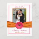 Pink Gerber Daisy Orange Ribbon Wedding Photo Thank You Postcard