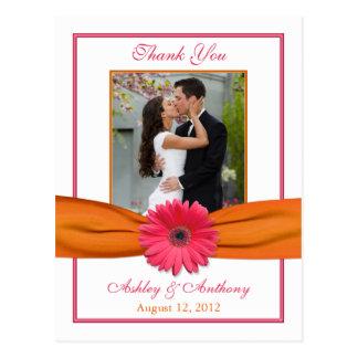 Pink Gerber Daisy Orange Ribbon Wedding Thank You Postcard