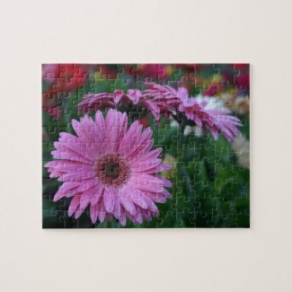 Pink gerber daisy puzzle flower daisies gift ideas
