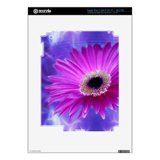 Pink Gerber Daisy Skins For iPad 3