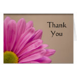 Pink Gerber Daisy Thank You Note Card