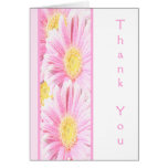 Pink Gerbera Daisies on White Thank You Note Card Card