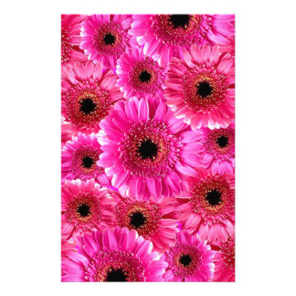Pink Gerbera Daisies Personalized Stationery