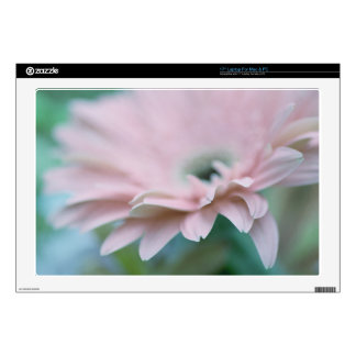 Pink Gerbera Daisy Decals For Laptops