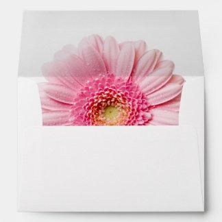 Pink Gerbera Daisy Envelope A7 Greeting Card
