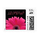 Pink Gerbera Daisy Flower Black Wedding RSVP Postage