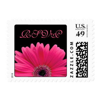 Pink Gerbera Daisy Flower Black Wedding RSVP Postage