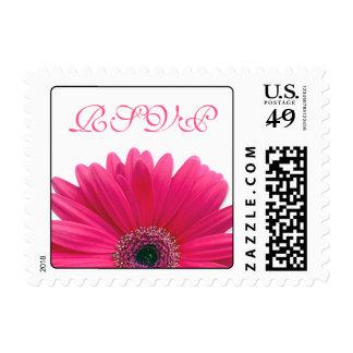 Pink Gerbera Daisy Flower Wedding RSVP Postage