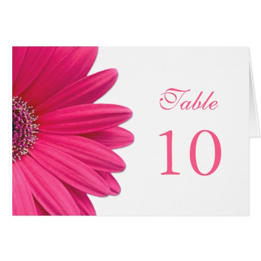 Pink gerbera daisy flower wedding tent table card zazzle