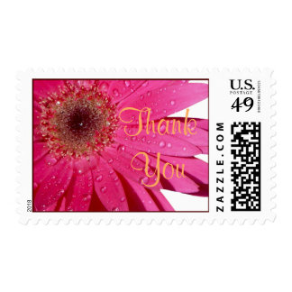 Pink Gerbera Daisy Flower Wedding Thank You Postage Stamp