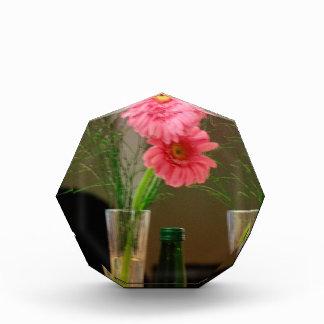 Pink Gerbera Daisy Gifts Award