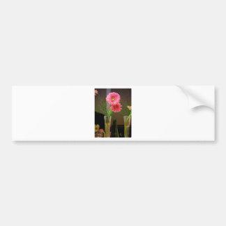 Pink Gerbera Daisy Gifts Bumper Stickers