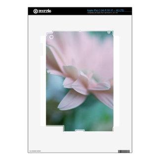Pink Gerbera Daisy iPad 3 Decal