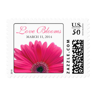 Pink Gerbera Daisy Love Blooms Wedding Postage